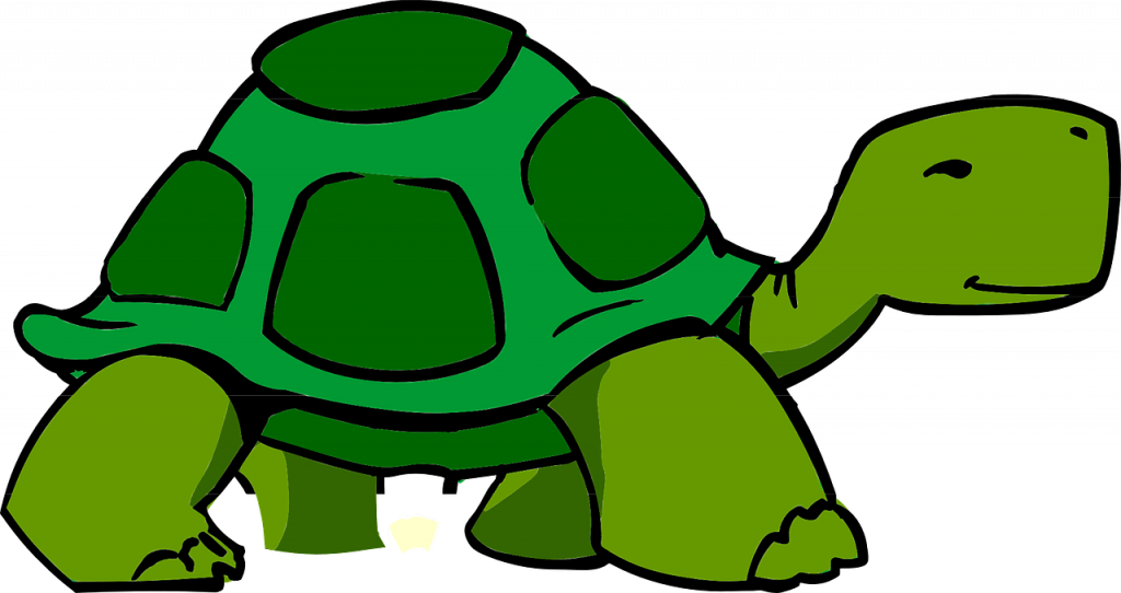 go slow and steady in your speech, like the tortoise from the children's book